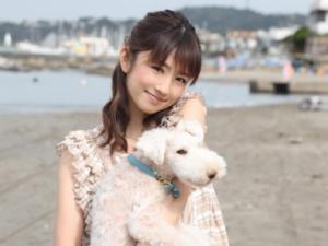 小倉優子のプロフィール